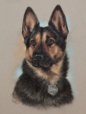 Terry Rowe Pet Portraits, Commissioned Photography and Pastels